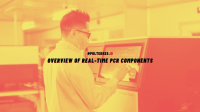real-time PCR components